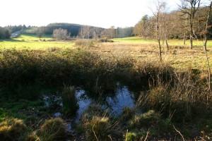 Source de l'Aiguebelle, cote 600 mètres.