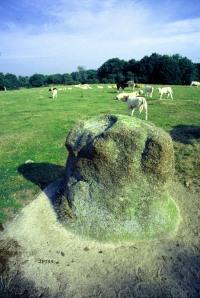 Une meule de foin de granite...