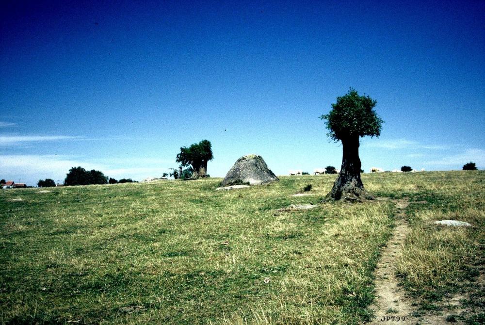 Le Tour de Gaule des merveilles de granite : La Gâtine. (1/6)