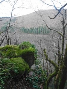l'ange déchu, en face au fond le versant de Peyremourou.